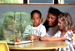 Teacher and students looking at a bird in a cage